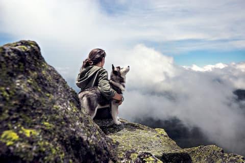 Mensch und Hund Reisen Hundeschule